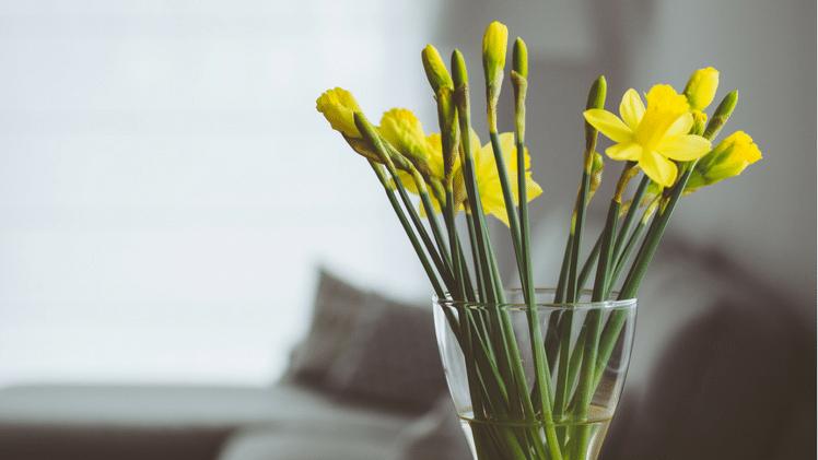 Quick sale: flowers