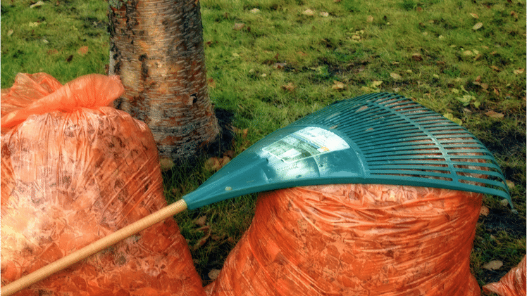 Selling in Autumn: rake away leaves